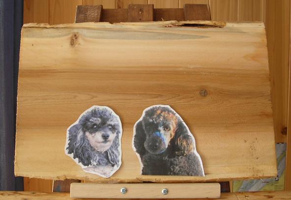 1- Le tableau en bois brut avec un aperçu des deux animaux